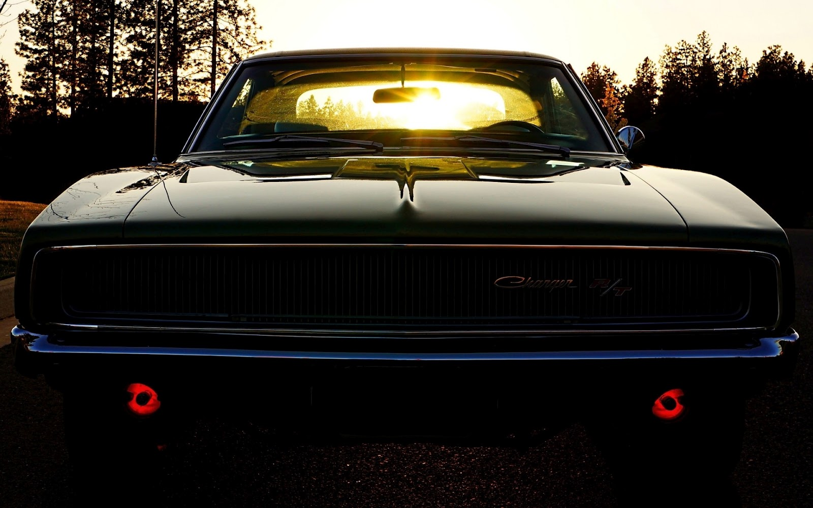dodge challenger shining sunlights hd car wallpaper | hd wallpapers