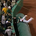Josh Donaldson dives over tarp for fantastic catch (Video)