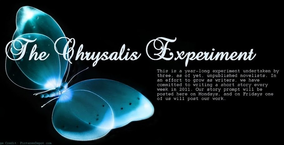 The Chrysalis Experiment