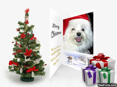 Un arbol de navidad regalos y un perro con gorro