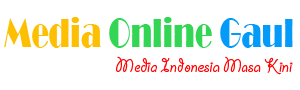 Media Online Gaul