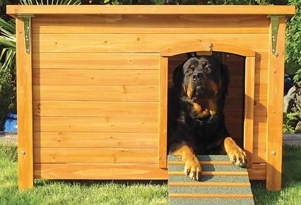 Casita mia cuchas carritos y mas modelos originales - Casa de perro grande ...