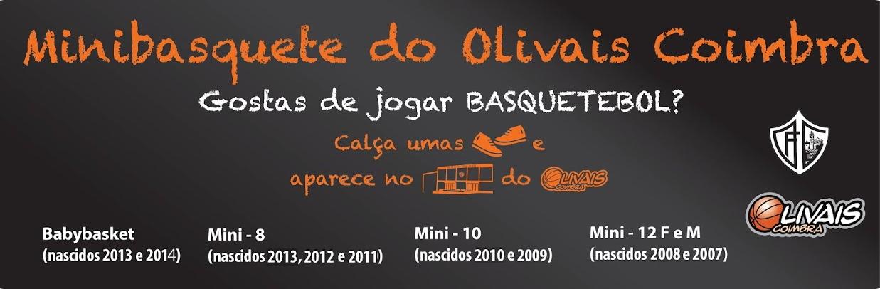 Minibasquete do Olivais FC Coimbra