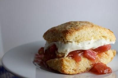 Perfect Biscuits and Rhubarb Shotcake