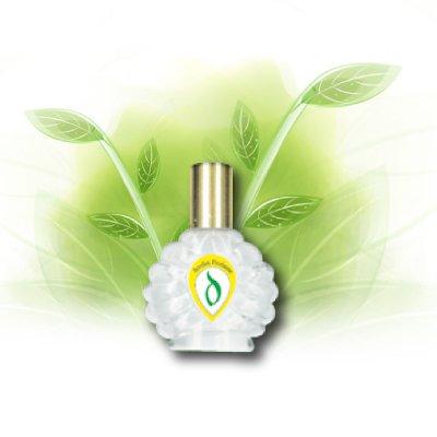 http://1.bp.blogspot.com/-HHt2o_V6i3w/T31vuy3SfTI/AAAAAAAABYY/psNhX5E06Ac/s1600/perfume.jpg
