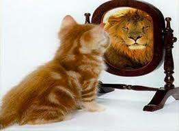 كيف تستعيد ثقتك بنفسك  - قطة اسد مراه الثقة بالنفس فى النفس - cat lion mirror self esteem confidence confident