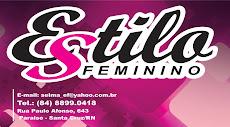 ESTILO FEMININO  /  VOCÊ SEMPRE NA MODA