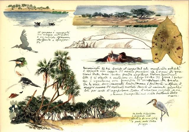 Nelle Terre dei Malaspina