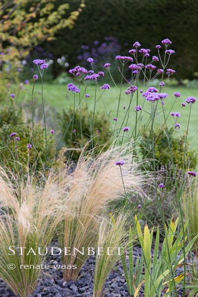 Staudenbeet, Kiesbeet oder Präriebeet für einen privaten Garten bei München