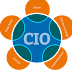 5 Karakteristik CIO yang Baik