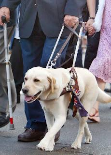 Σκύλος οδηγός με τον τυφλό ιδιοκτήτη του