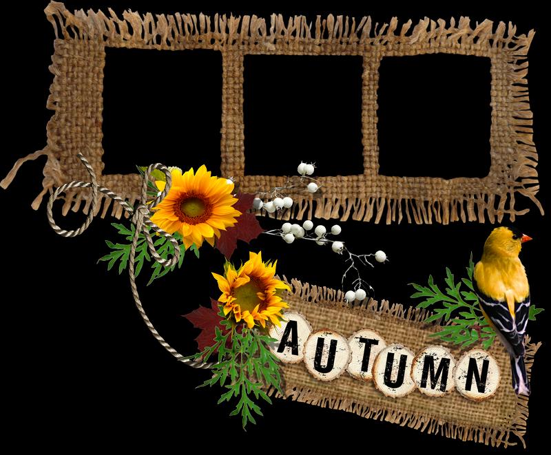 http://1.bp.blogspot.com/-HIxXKEFuvUA/VFypKDLl-6I/AAAAAAAAJqs/yrEYCKiMa4k/s1600/AO_Autumn%2BSpecial%2BCluster%2B%5Bblog%2Bpreview%5D.png