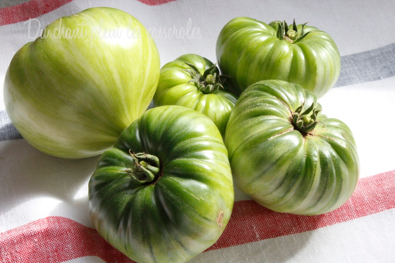 Concert de casseroles quand les tomates restent vertes variantes aigres douces - Quand repiquer les tomates ...