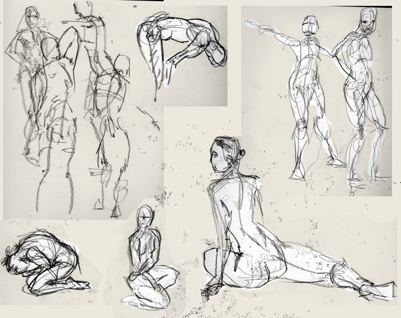 "Spartan Camp #216 - 50 gestures + Optional ""Two week long Study"""