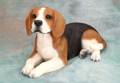 Most Popular Dog Breeds In The World Beagle