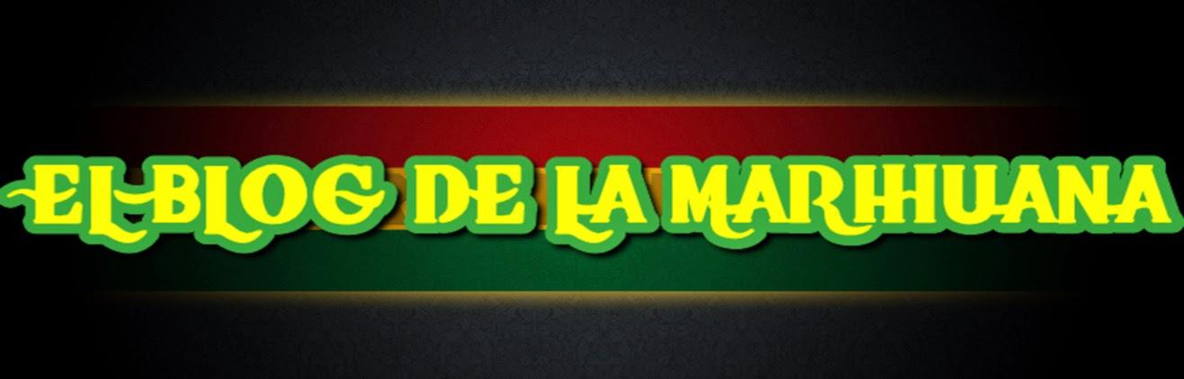 El Blog de la Marihuana