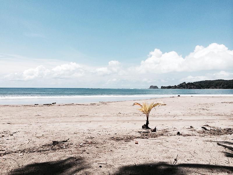 OH-yei!-Costa-Rica