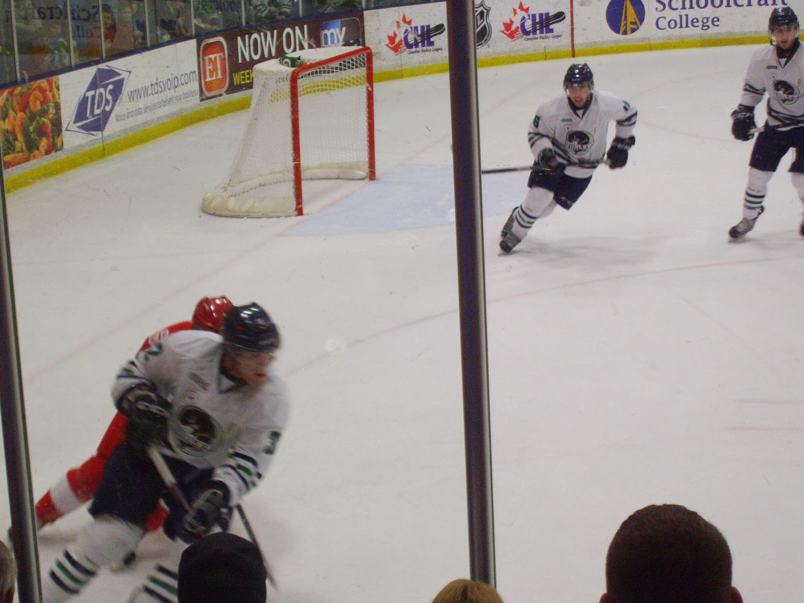 Mitten State Sports Report Whalers Vs Greyhounds