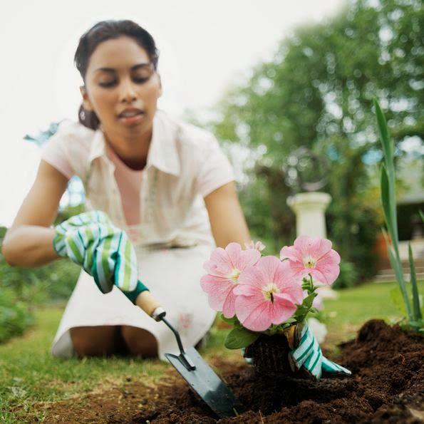 Menanam Bunga, Tanaman Berbunga