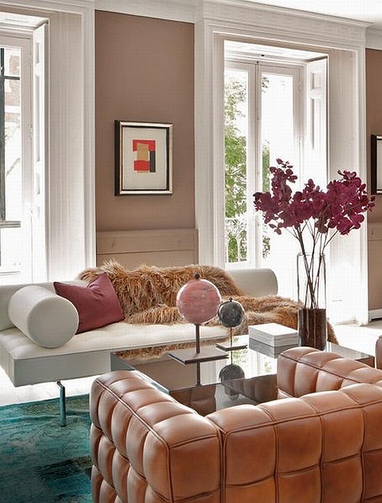 elegant and modern brown living room