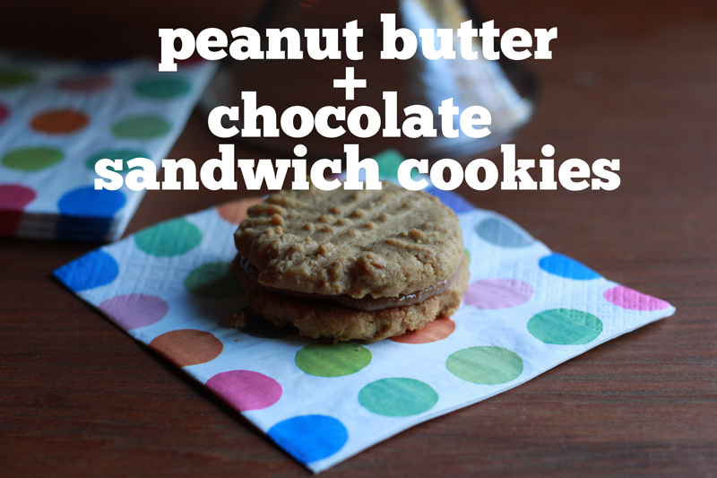 Stir & Scribble: Peanut Butter and Chocolate Sandwich Cookies