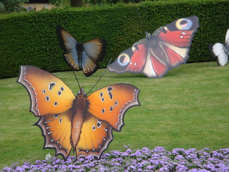 De vlindertjes