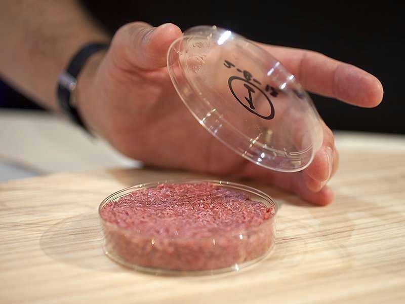 O primeiro hambúrguer criado em laboratório