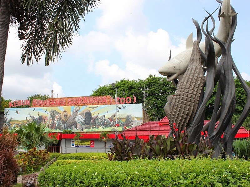 Kebun-Binatang-Surabaya