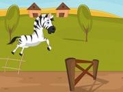 Racing Zebra | Juegos15.com