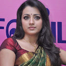 Trisha Looking in Saree Cute Photos