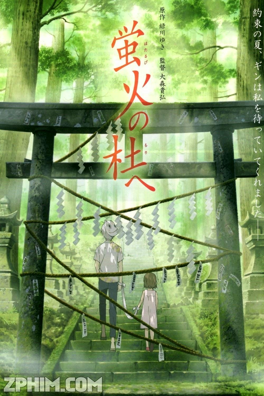 Bản Tình Ca - Hotarubi No Mori E (2011) Poster