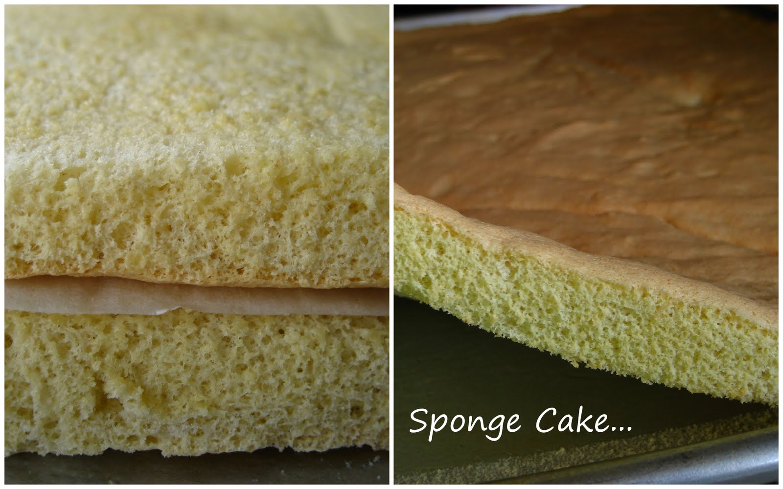 Traditional Sponge