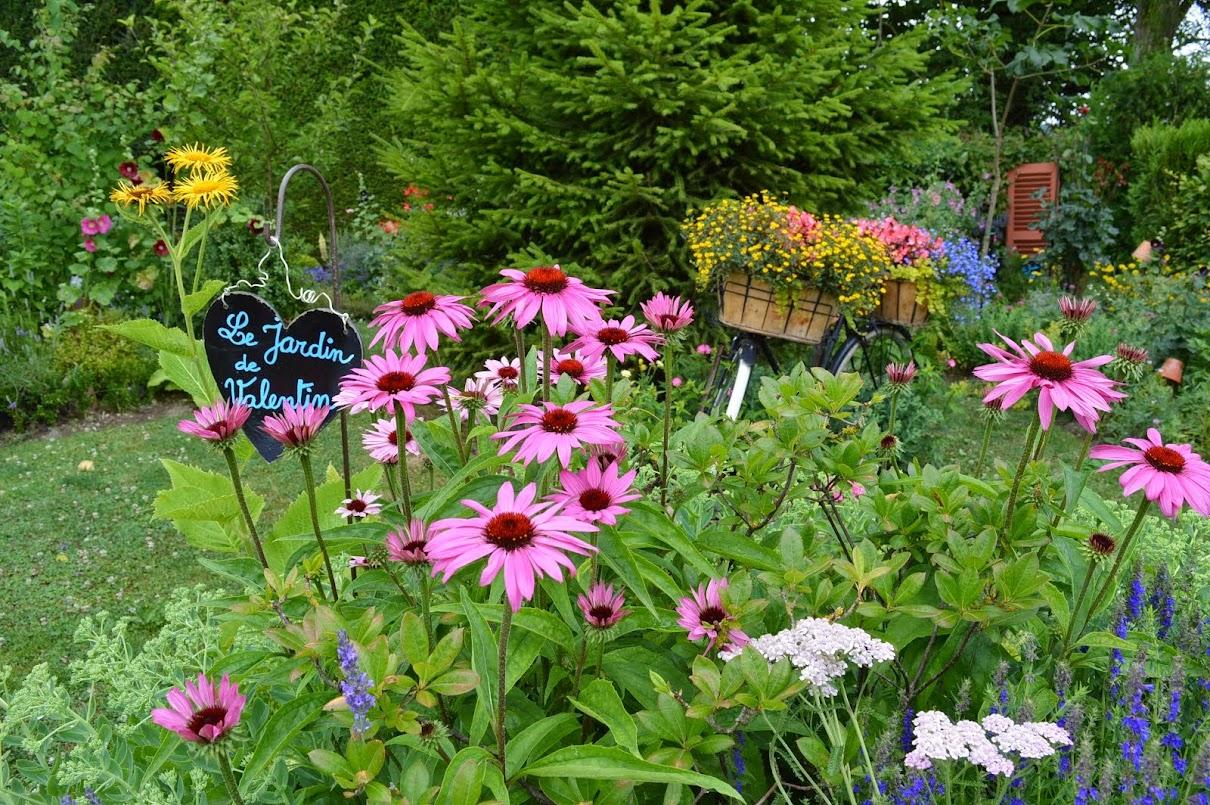 le jardin de marianne