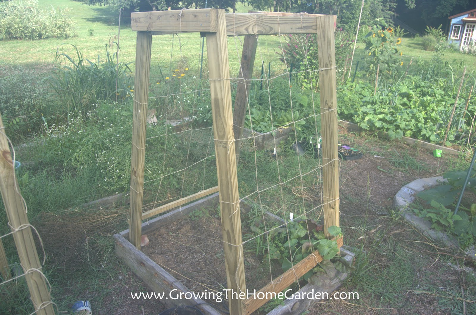 Homemade cucumber or melon trellises growing the home garden - Building trellises property ...