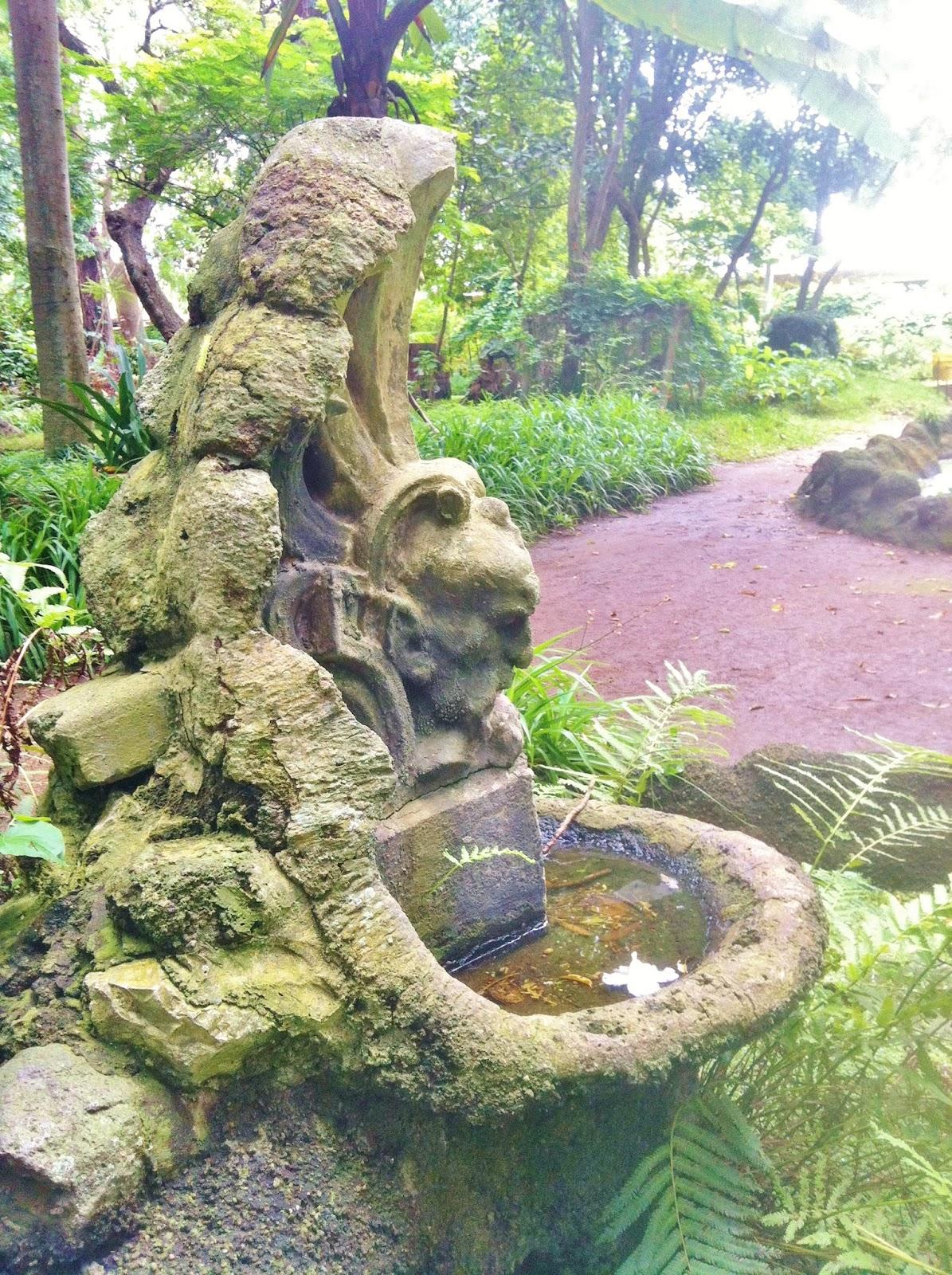Arlequinblog una visita al jard n bot nico for Como ir al jardin botanico