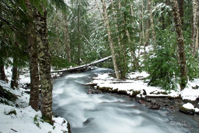 Winter at Zigzag River