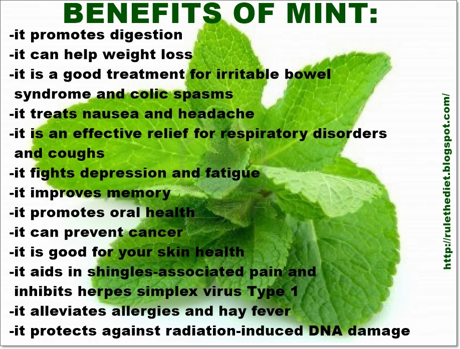 Weight Loss For A Healthy Lifestyle Health Benefits Of Mint
