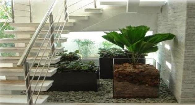 mini jardim residencial:mini jardim mini jardim e fontes plantas naturals