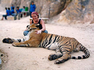 Tiger Kingdom vs Tiger Temple: Sitting with Tiger at the temple
