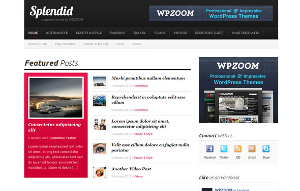 Splendid - Premium WordPress Theme Free Download by WpZoom.