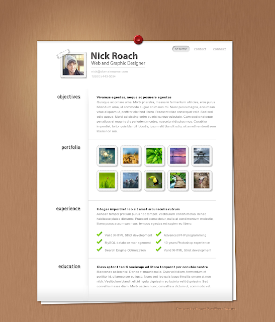 MyResume WordPress Theme