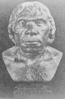 Restorasi manusia Neander
