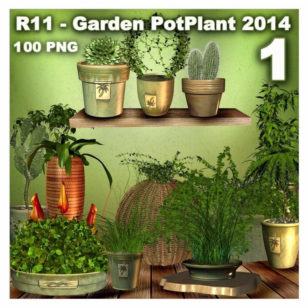 http://1.bp.blogspot.com/-HNJpwb6MhNk/U5xsmSPgBGI/AAAAAAAADYc/xc0ffbeyCZg/s1600/R11+-+Garden+PotPlant+2014+-+1.jpg