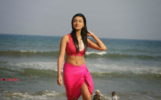 Actress Neelam Upadhyay  Wet Picture Gallery in Pink Bikini Top 0069.jpg