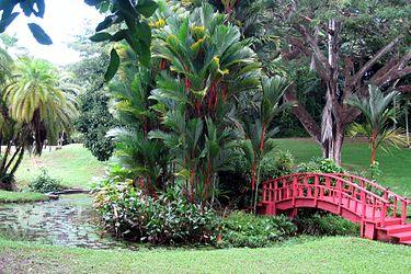 Trabcol2herramientastelematicas san juan de puerto rico for Los jardines de sansuena