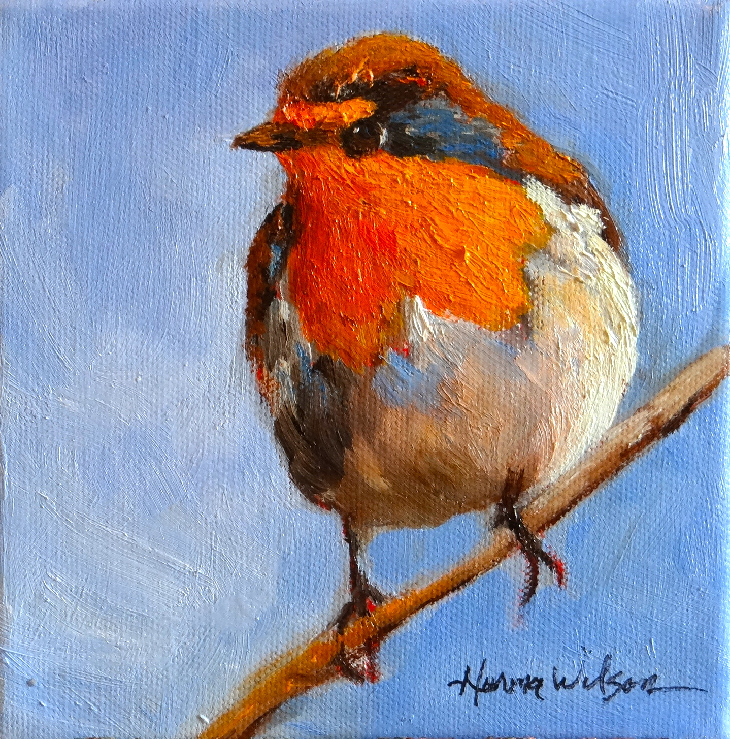 robin bird painting