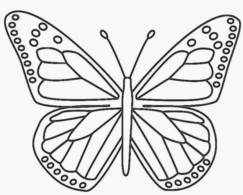 butterflies coloring pages coloring pages for kids - Kids Drawing Sheet