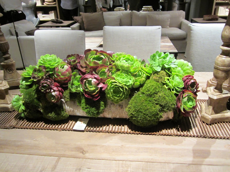 succulents in a stone planter on a wood table with a bamboo runner in the new Restoration Hardware store