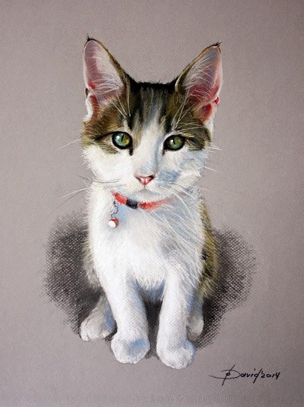 Katze Sitzend, Pastell / Papier