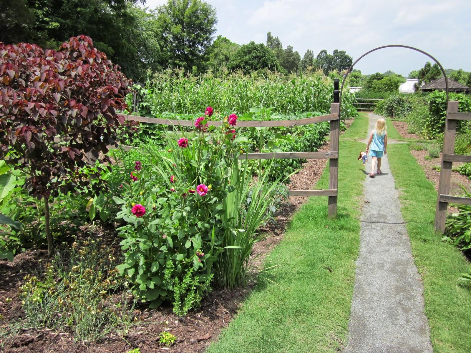 Vegetable Garden In Reynolda Gardens © Katrena